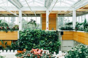 Décorations végétales pour événement éco-responsable